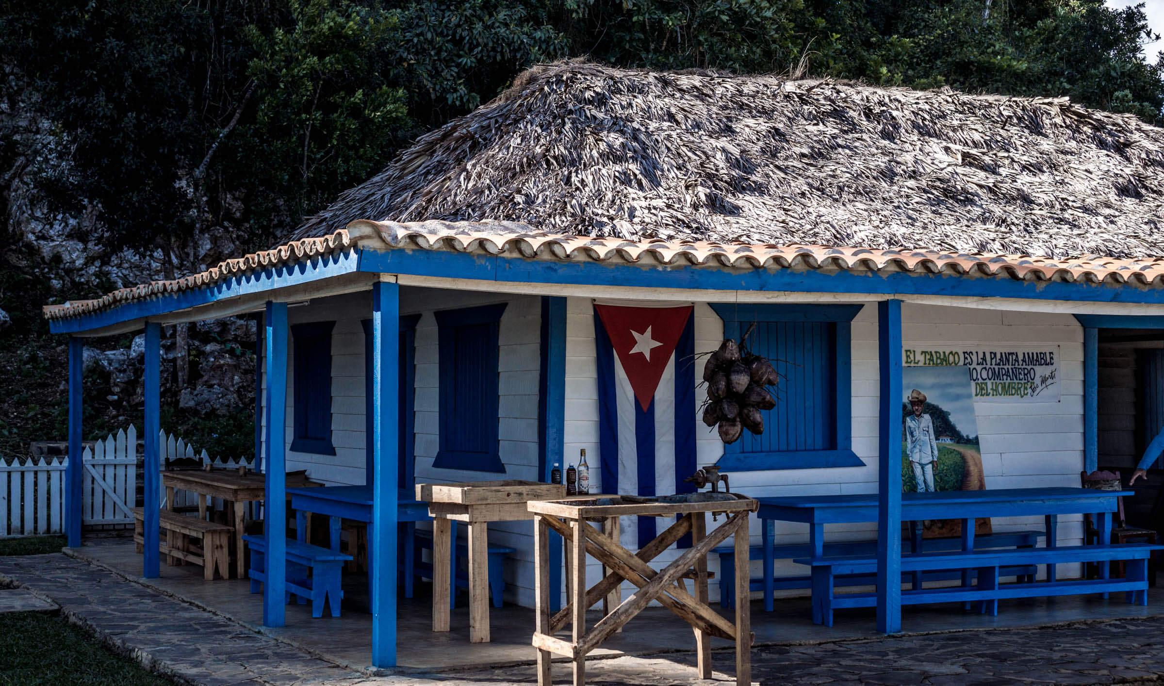 Vinales Kuba Tabakplantage