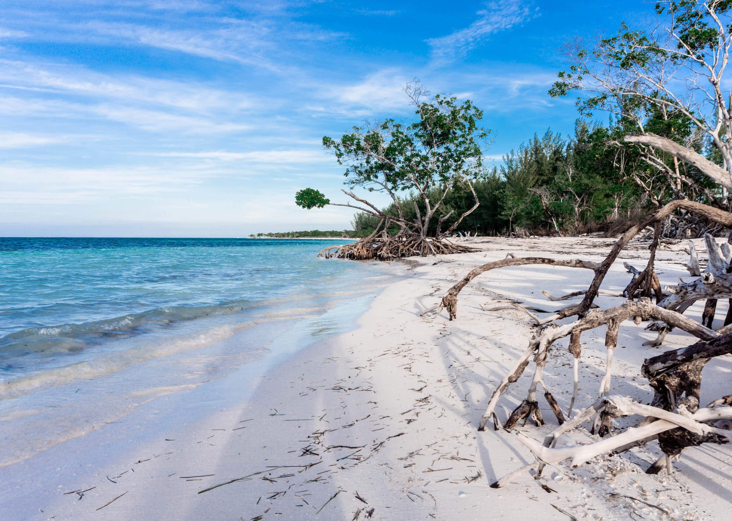 Cayo Jutias Kuba Strand