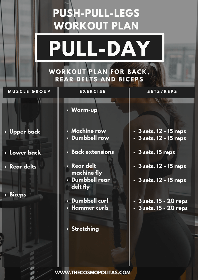 Pull Day Workout Plan
