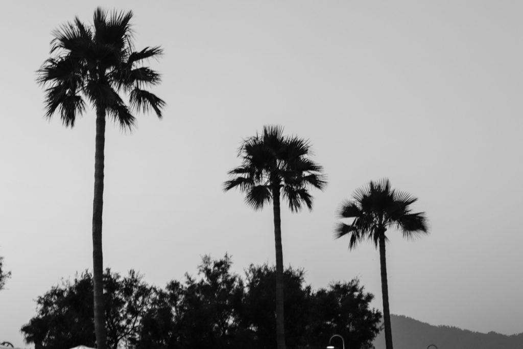 Urlaubsdestination: Mallorca