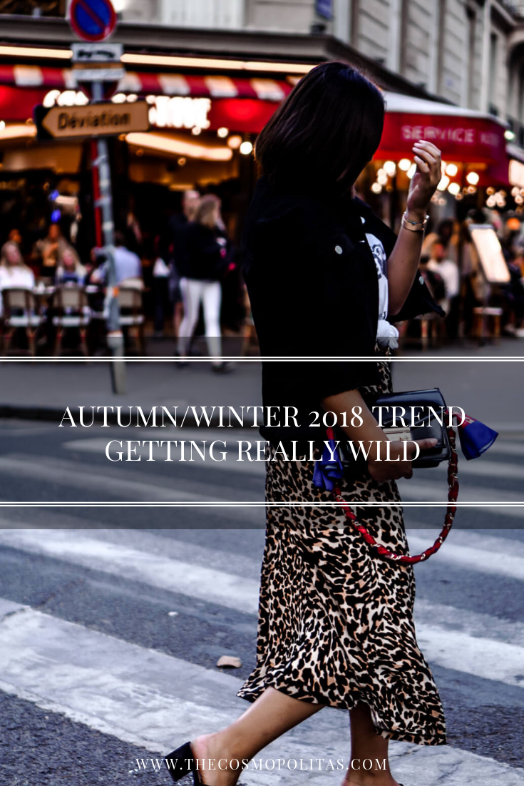 AUTUMN/WINTER 2018 TREND: GETTING REALLY WILD