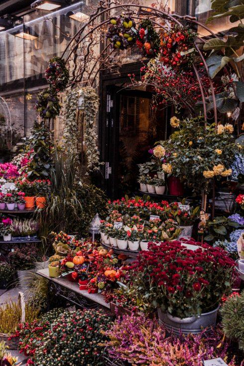 Die schönsten Dinge, die man im Oktober in Wien tun kann